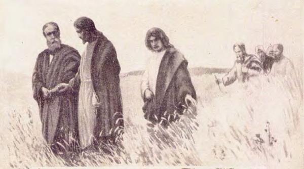 jesus-discipulos-trigal-en-grande3