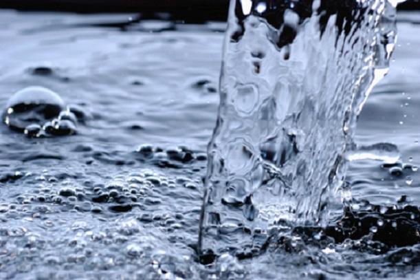 Agua viva