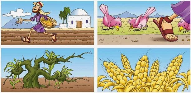 parabola del sembrador med